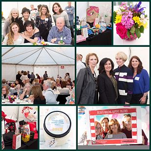 Collage of photos from the Volunteer Appreciation Party